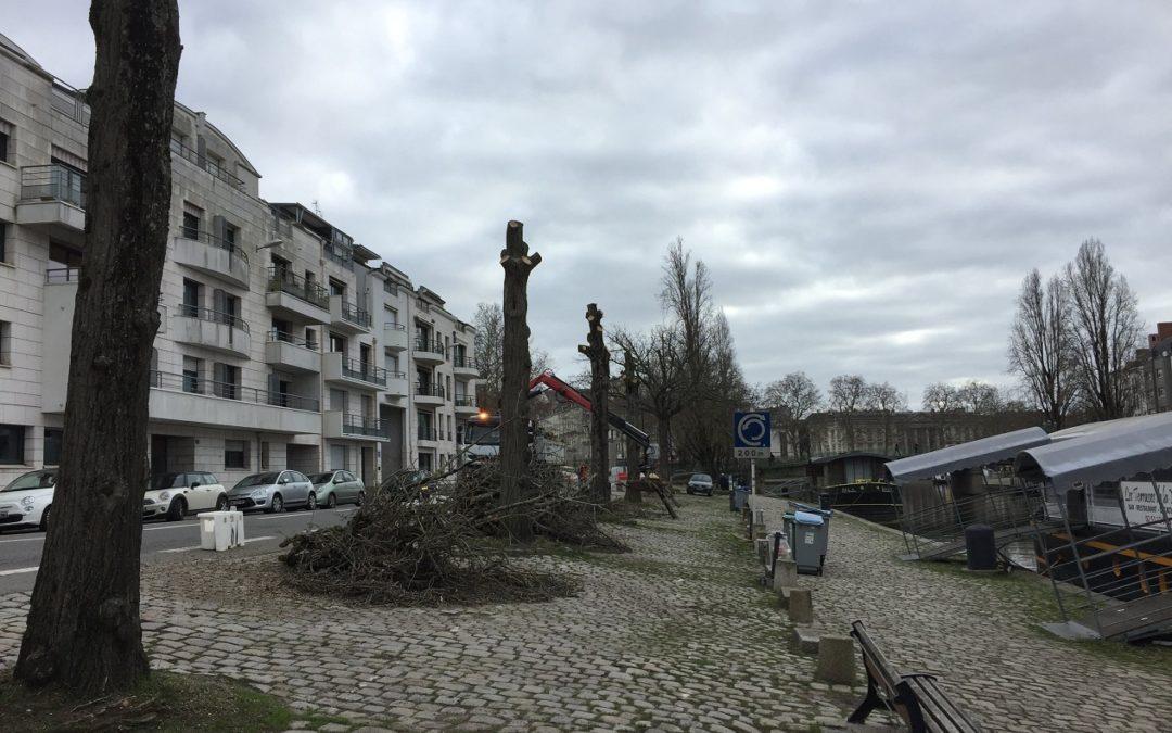 Abattage des arbres du quai Henri Barbusse, le 14 janvier 2019